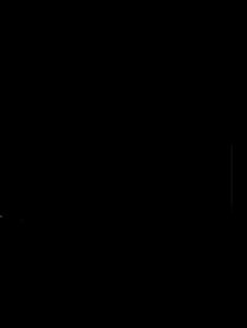 windo 90 t disegno